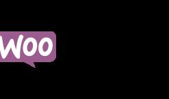 Woocommerce export, l'outil pratique pour sa boutique en ligne