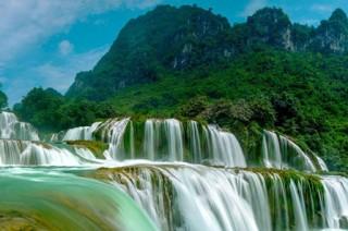 Comment le site vietnamvo.com m'a aidé à faire mon choix
