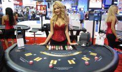 Blackjack France: les informations nécessaires sur le jeu de pari